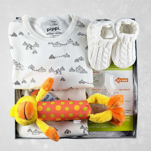 Gender Neutral Welcome Baby Gift