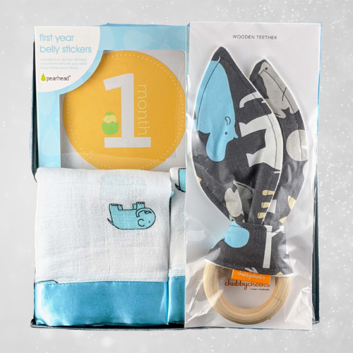 Hippo Baby Gift for Boy