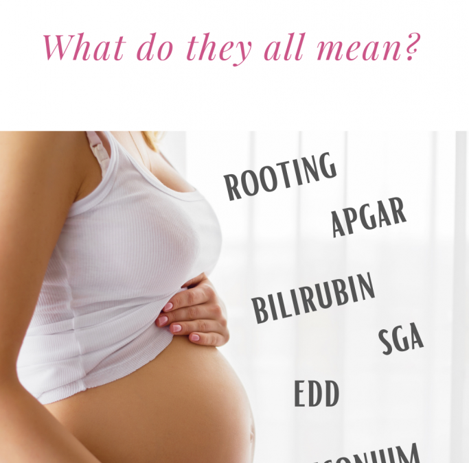 What do all these pregnancy terms mean?