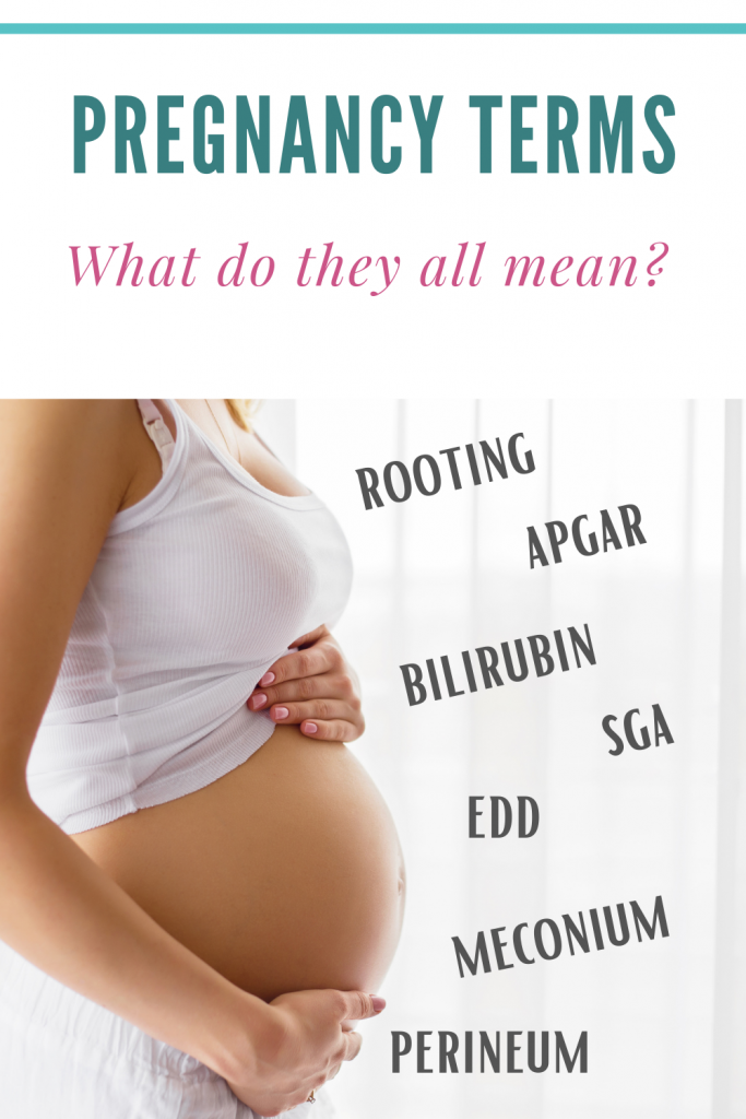 Pregnancy related terms