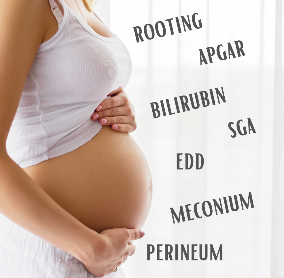 Pregnancy words