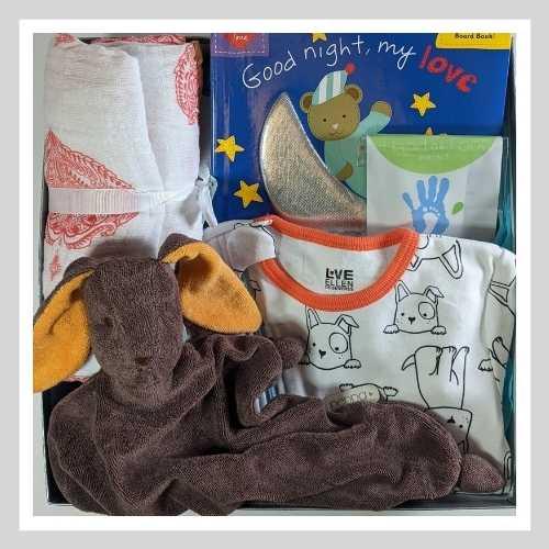 Baby Gift Bunny Book